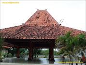 Museum Triniil
