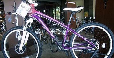 Ini Dia, Sepeda Khusus Perempuan