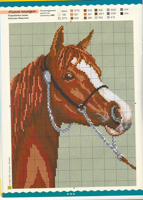 [cavalo+cabeça.jpg]