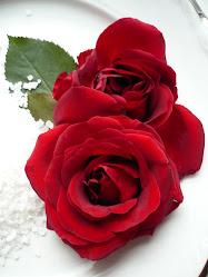 Red róża