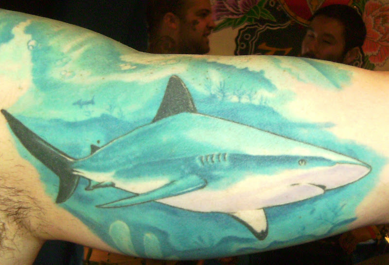 and this amazing Great White shark on the inside of his biceps: title=