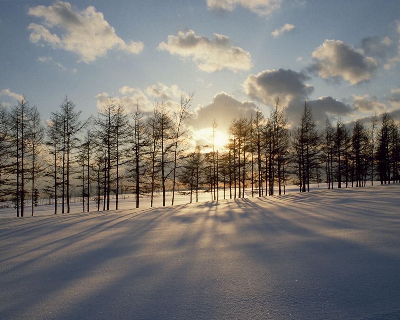 http://4.bp.blogspot.com/_ZMpCyvKsRzk/TSZfjWWpI-I/AAAAAAAAAF8/NzghcxBBurY/s1600/snowy-sunset-wallpaper.jpg