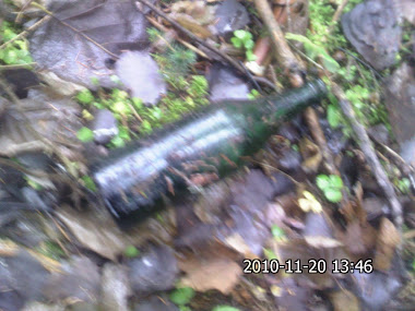 old wine bottle.....empty ;)