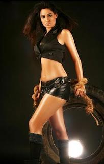 Shweta Tiwari Bigg Boss 4