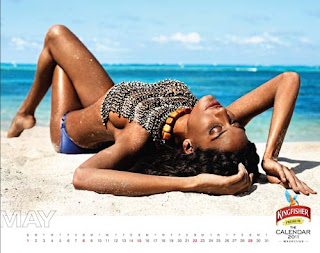 Kingfisher Calendar 2011 - May
