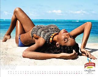 Kingfisher Calendar 2011 - May