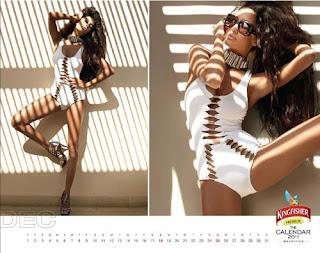 Kingfisher Calendar 2011 - December