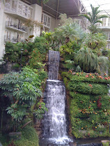 Pain Management Conference in Nashville, Tennesse at the Gaylord Opryland Resort