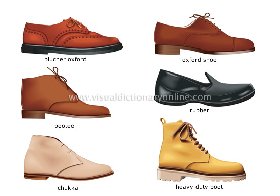 the world of shoes