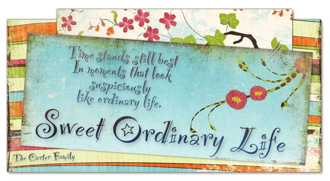 Sweet Ordinary Life