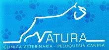 """NATURA AUSPICIA """"EL OJO VALE N TINO"""""""