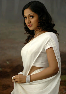Sheela in white saree spicy photos