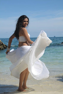 Sunaina in white saree spicy photos