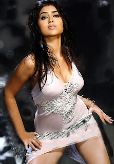 Shreya (Shriya) Sexy Stills