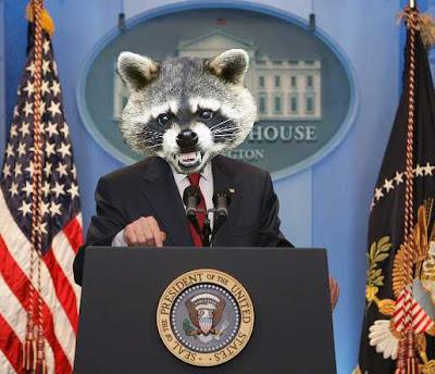 Presidential+Raccoon.jpg