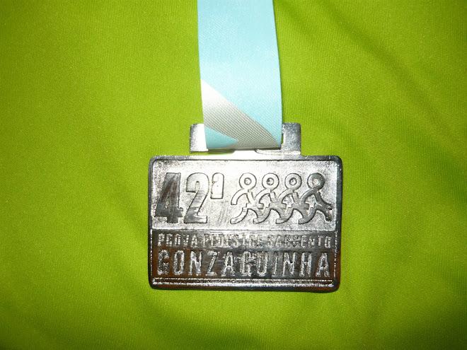 42º PROVA SARGENTO GONZAQUINHA 2008