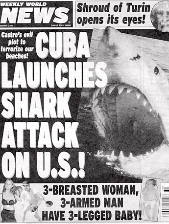 bull shark attacking. Cuba and ull shark diving