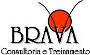 BRAVA CONSULTORIA E TREINAMENTO LTDA.