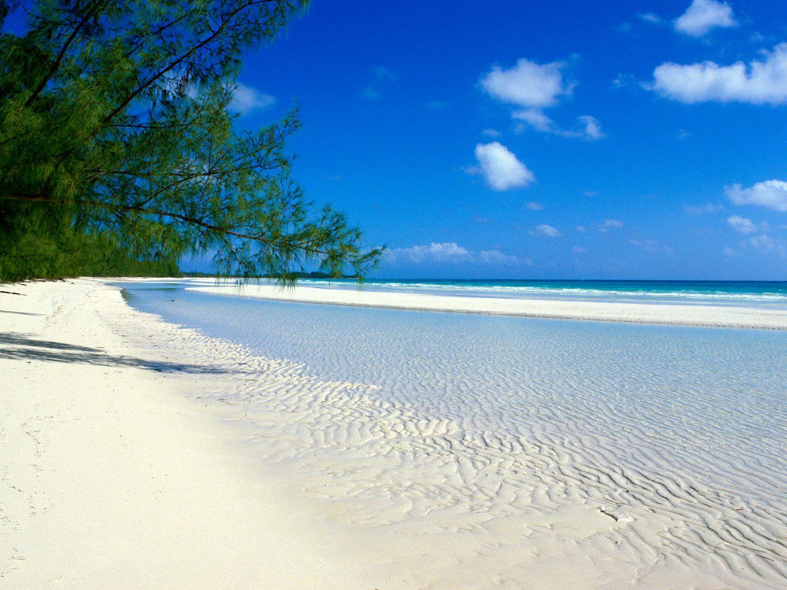 http://4.bp.blogspot.com/_ZVl3g4WfT_M/S93k9JC8gII/AAAAAAAAD1I/6QvZpQNtN7Y/s1600/bahamas+beach.jpg