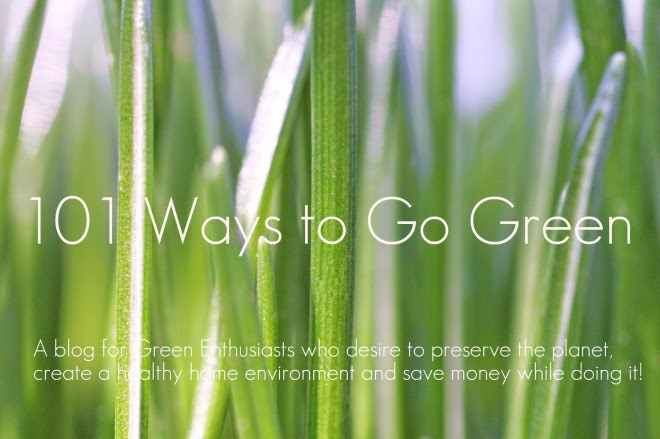 101 Ways to Go Green