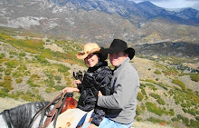 Horse Ride in Alpine
