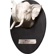 .elefante.