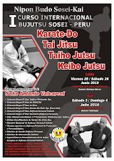 I Curso Internacional de Bujutsu en Ica