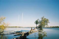 Bald Eagle Lake, Minnesota