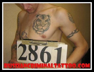 Тюремная татуировка кота значение