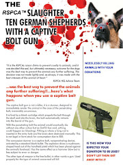 RSPCA SLAUGHTER 10 GERMAN SHEPHERDS WITH A CAPTIVE BOLT GUN