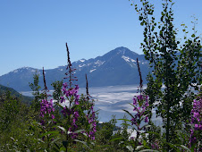 Turnagain Arm, AK