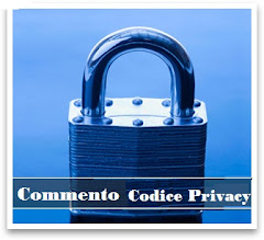 Commento Codice Privacy 1.0