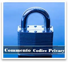 Commento Codice Privacy 1.0