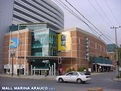 Marina Arauco