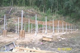 Pembinaan tapak