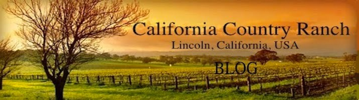 California Country Ranch
