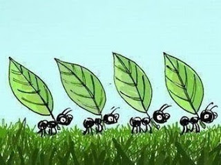 Jardin de fieltro aaaaahhh hormigas en mi jardin for Hormigas en el jardin