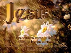 JESUS QUIERE REFRESCAR TU VIDA.