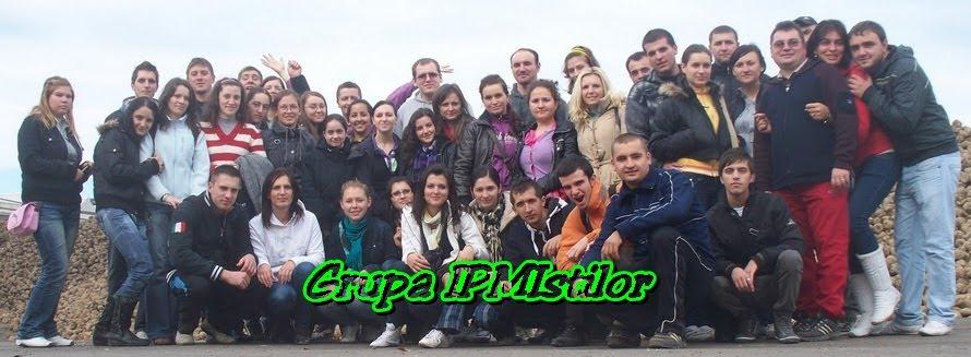 grupa IPMI-stilor