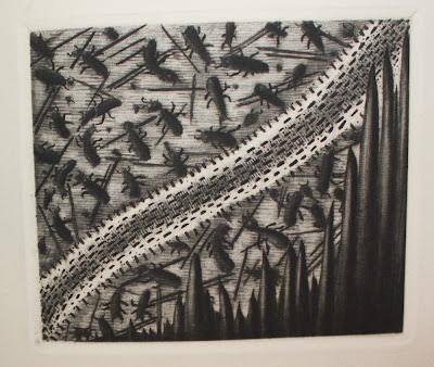 termites43 dans Reliure, relieur, restauration, entretien