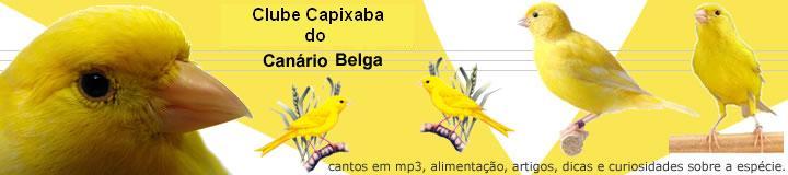 Clube Capixaba do Canário Belga