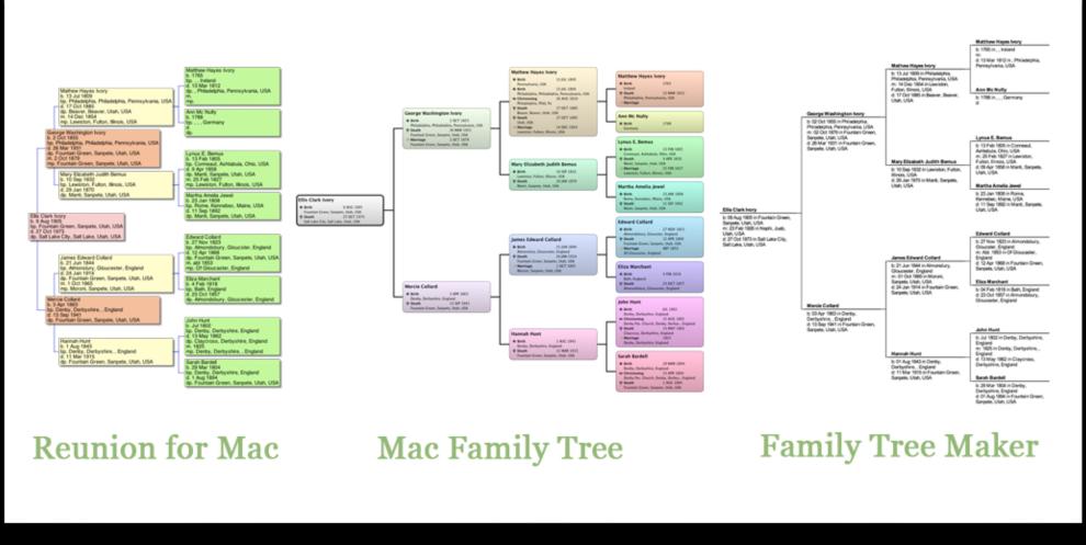 Pedigree chart family tree maker
