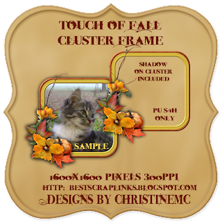 http://bestscraplinks.blogspot.com/2009/09/touch-of-fall-cluster-frame-freebie.html