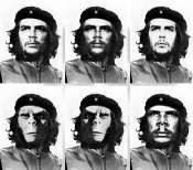 evolution of Che