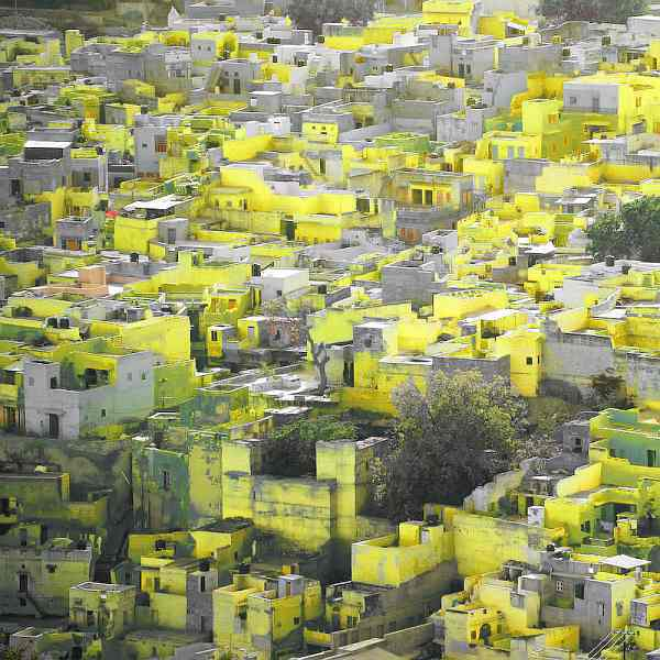 lets_color_project_Jodhpur lemon yellow