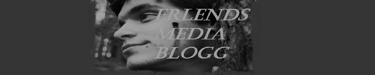 Erlends Mediablogg
