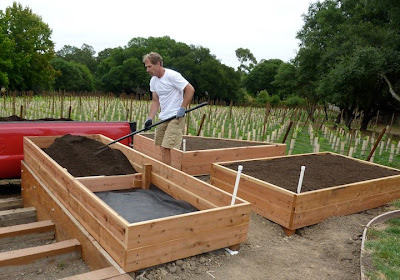 How To Make Simple Raised Bed With Wood Gardening Youtube
