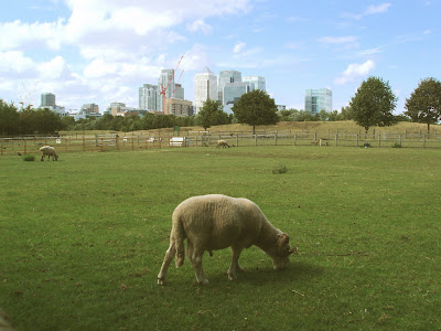 Mudchute park farm docklands