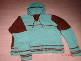 camisola com capuz/sweater with hood