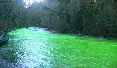 Wah! betul la.. airnya memang hijau. sungguh menghairankan